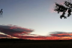 Sunrise - Eastern Cape
